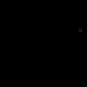 Basic Hard Seltzer logo